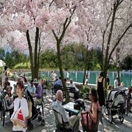Hinton Park Master Plan